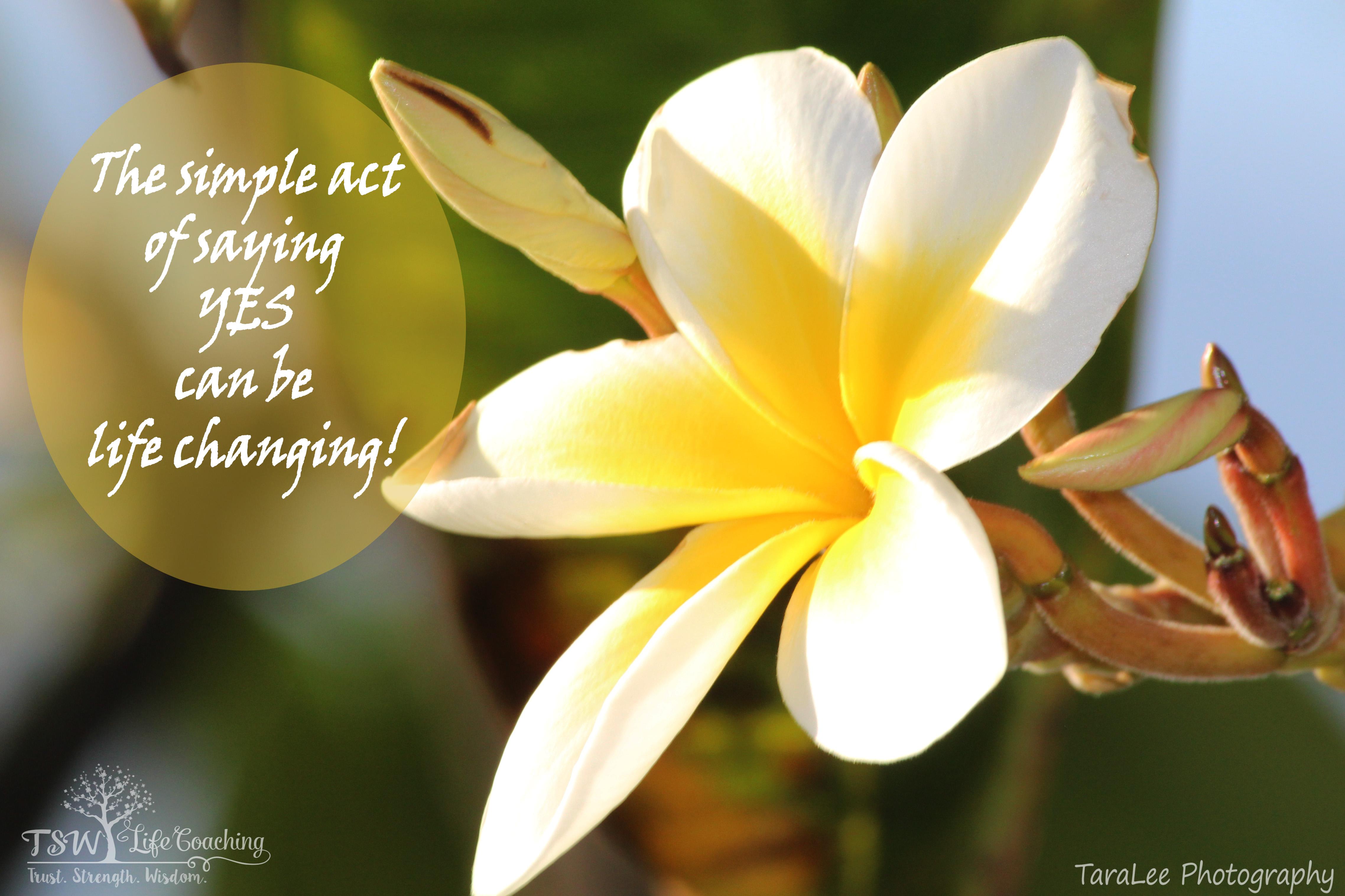 Flower Hawaii Single With Bud Quote Tsw Life Coaching