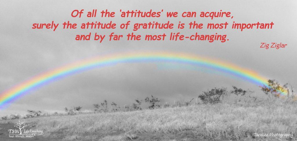 Gratitude Challenge ... Accepted!